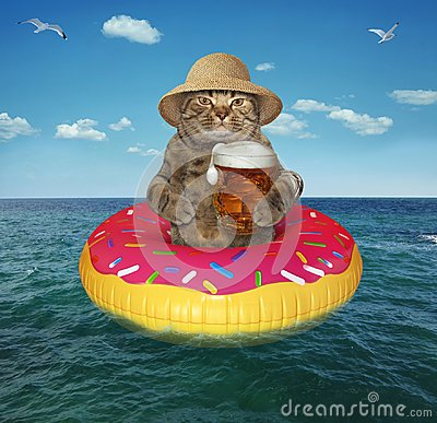 Free Cat With Beer On Inflatable Circle Stock Photo - 121057240