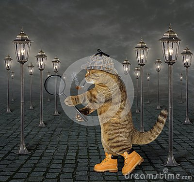 Free Cat With Magnifying Glass 2 Royalty Free Stock Images - 121799179
