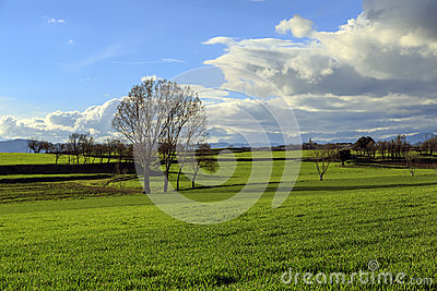 Catalan countryside, early spring. Spain