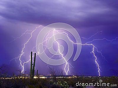 Catalina闪电