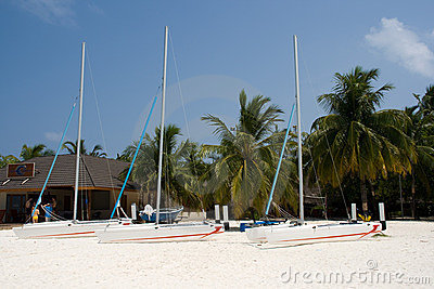 Catamarans On The Beach Royalty Free Stock Photo - Image: 7126965