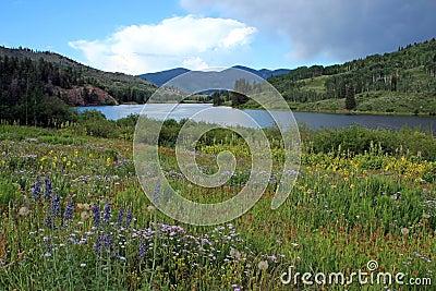 Cataract Lake, Colorado
