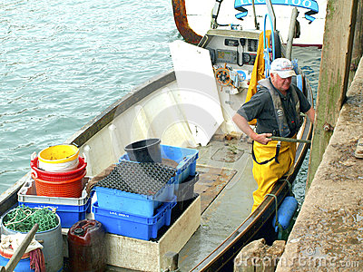 Catch of the day, Looe, cornwall. Editorial Image