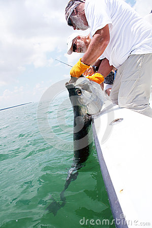 Catching a Tarpon