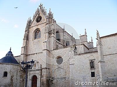 Catedral de san Antolin, Palencia ( Spain )