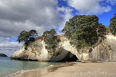 Cathedral Cove Coromandel Arch
