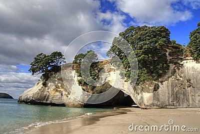 Cathedral Cove Coromandel Arch