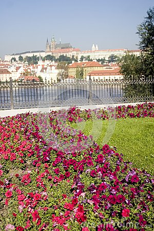 Cathedral With Foreground Flowers And River
