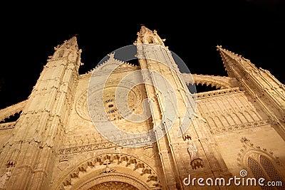Cathedral of Majorca in Palma de Mallorca night