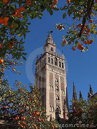 Free Cathedral Orange Trees Royalty Free Stock Image - 20523226