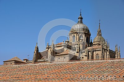 Cathedral of Salamanca and Las Duenas Convent