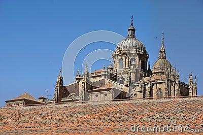 Cathedral of Salamanca and Las Duenas Convent