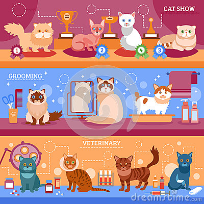Free Cats Banner Set Stock Photo - 66563900