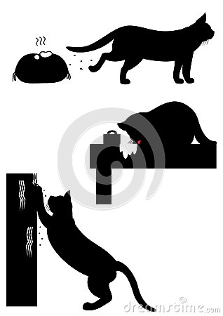 Cats difficult behaviors