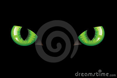 Cats Eyes. Vector