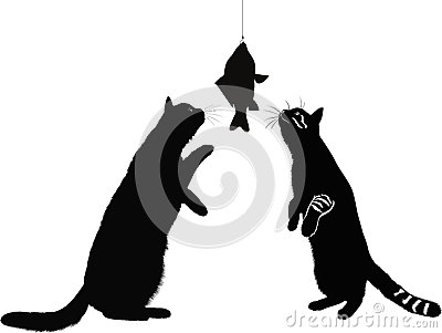 Cats and fish animals isolated