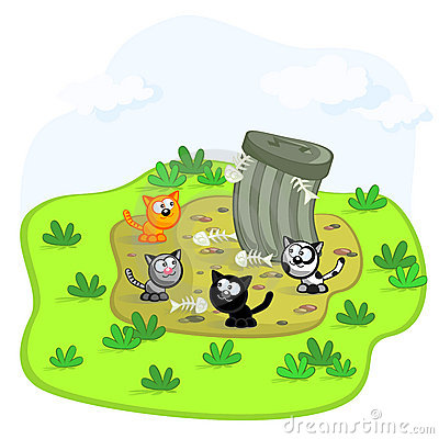 Cats and garbage pit
