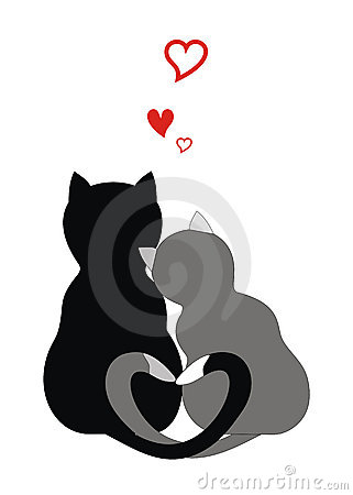 Free Cats In Love Stock Photo - 3705150