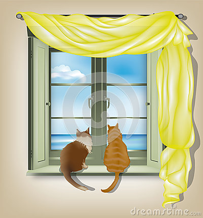 Cats looking out of window