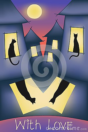 Cats, night sity, moon and love