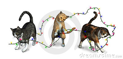 Cats playing with Christmas Lights