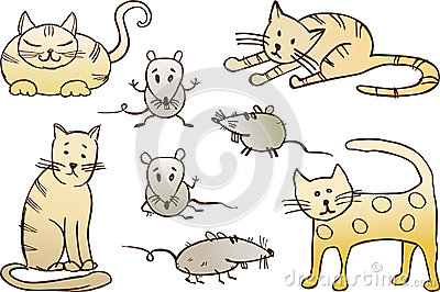 Cats and rats