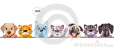 Cats and small dogs border set. Funny dog and cute cat best friends. Happy friendship day. Vector Illustration