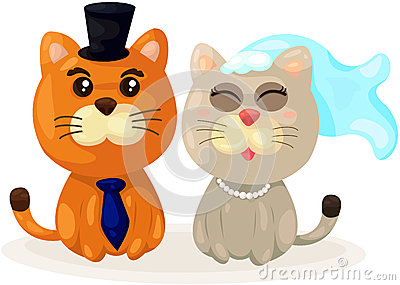 Cats wedding