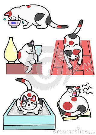 Cats various expressions and actions