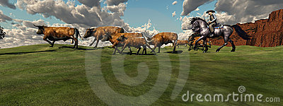 Cattle Roundup