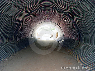 Cattle Tunnel