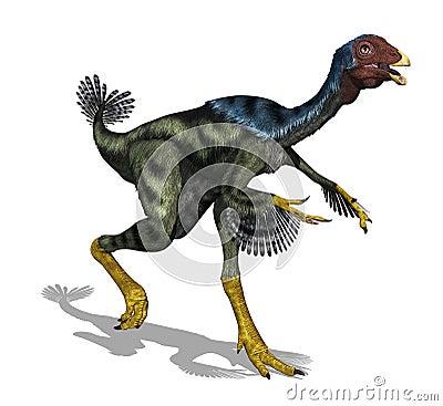 Caudipteryx Dinosaur