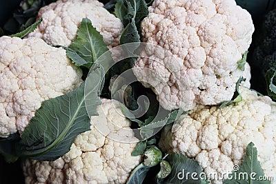 Cauliflowers, bunch of
