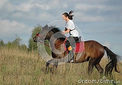 Cavaleiro e cavalo