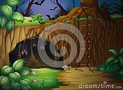 A cave and bats