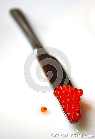 Caviale rosso