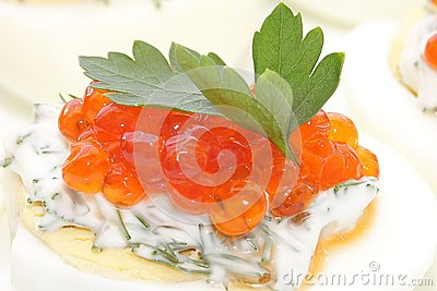 Caviar salmon species in chicken egg