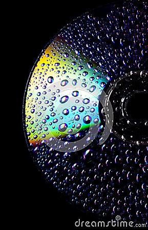 CD molhado