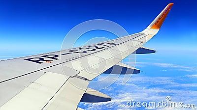 Cebu pacific aircraft wing