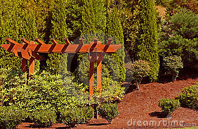 Cedar Arbor