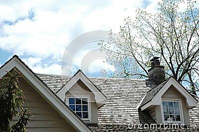 Cedar Shingle Rooftop