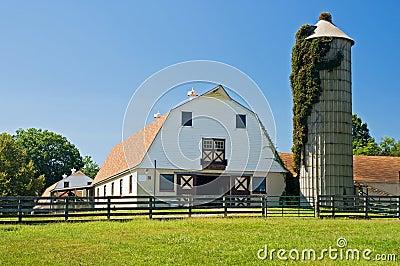 Celeiros e silo na exploração agrícola de leiteria