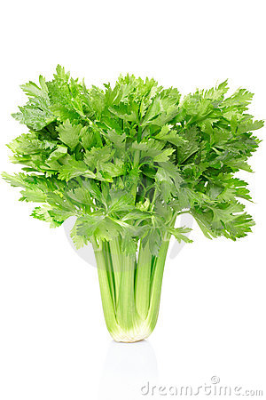 Free Celery Royalty Free Stock Image - 20280836
