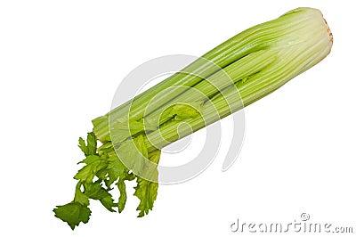 Celery stem