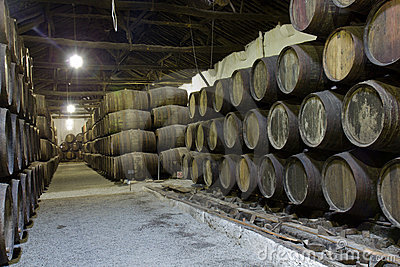 Cellar with wine wooden barrels