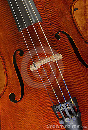 Cello or violin