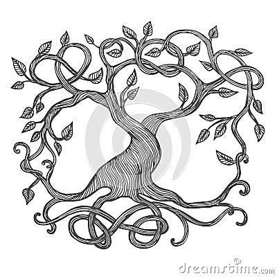 Celtic Tree of Life Vector Illustration