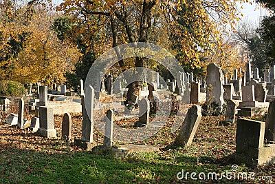 Cementerio judío viejo