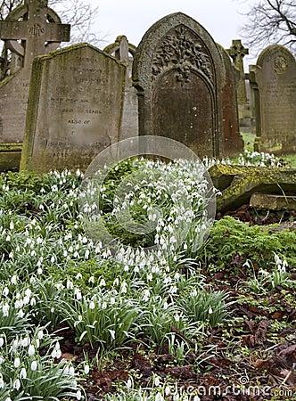 Cemetery in Burwell