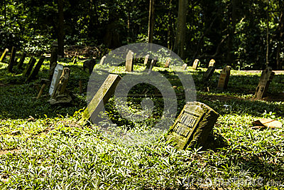 Cemetery in Monkey Forest
